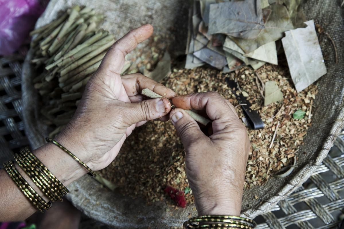 A woman rolls tobacco inside a tendu leaf to make a beedi cigarette at her home in Kannauj, Uttar Pradesh, India, on Wednesday, June 3, 2015. India's smokers favor cheaper options such as chewing and leaf-wrapped tobacco over cigarettes.