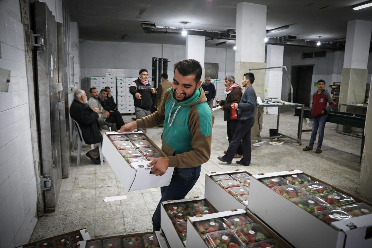 A worker piles boxes of strawberries inside the Ground Berries Association in northern Gaza. An unwritten deal between Israel and Hamas gives Gaza residents more access to jobs, trade and travel.