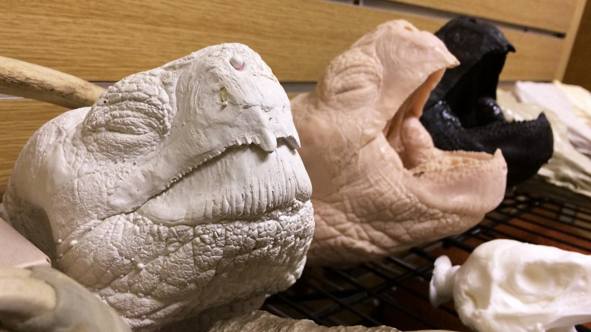 Three casts of the head of Lonesome George, the last giant Pinta Island tortoise.