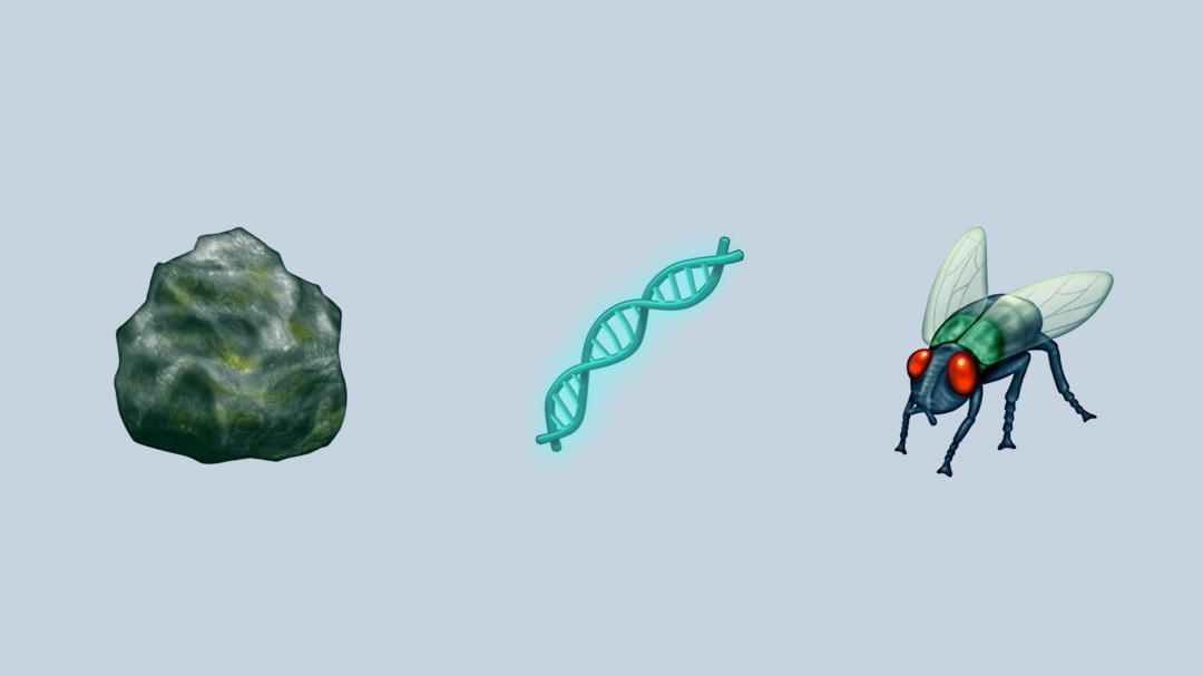 The scientific community has lots of feelings about emoji representation. Geologists are excited about the new rock emoji, for example, but reviews are mixed when it comes to the fly.