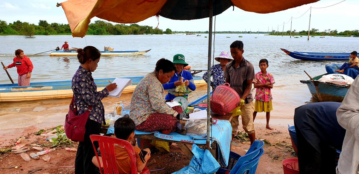 Fish broker Khout Phany, 39, (under umbrella) sits while fishermen bring their catch to be weighed in Chhnok Tru, a fishing village at the southern tip of the Tonle Sap lake where it meets the river.