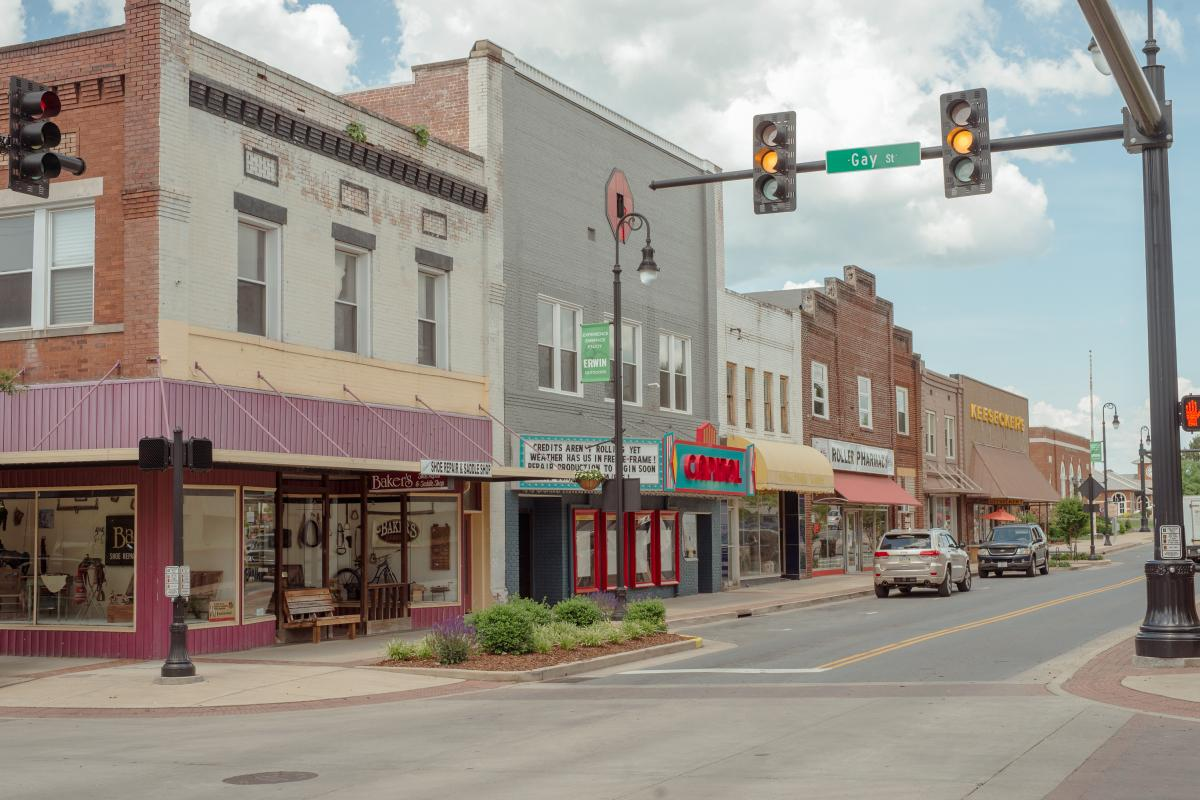 The town of Erwin was the site of the now famous hanging of Mary the elephant in 1916.