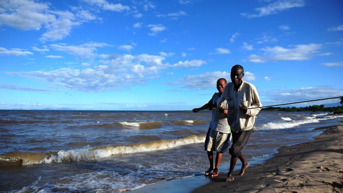 Fishermen drag a net in Lake Malawi in 2012. About the size of New Jersey, the lake is home to hundreds of fish species and is considered one of the most biologically diverse lakes in the world.