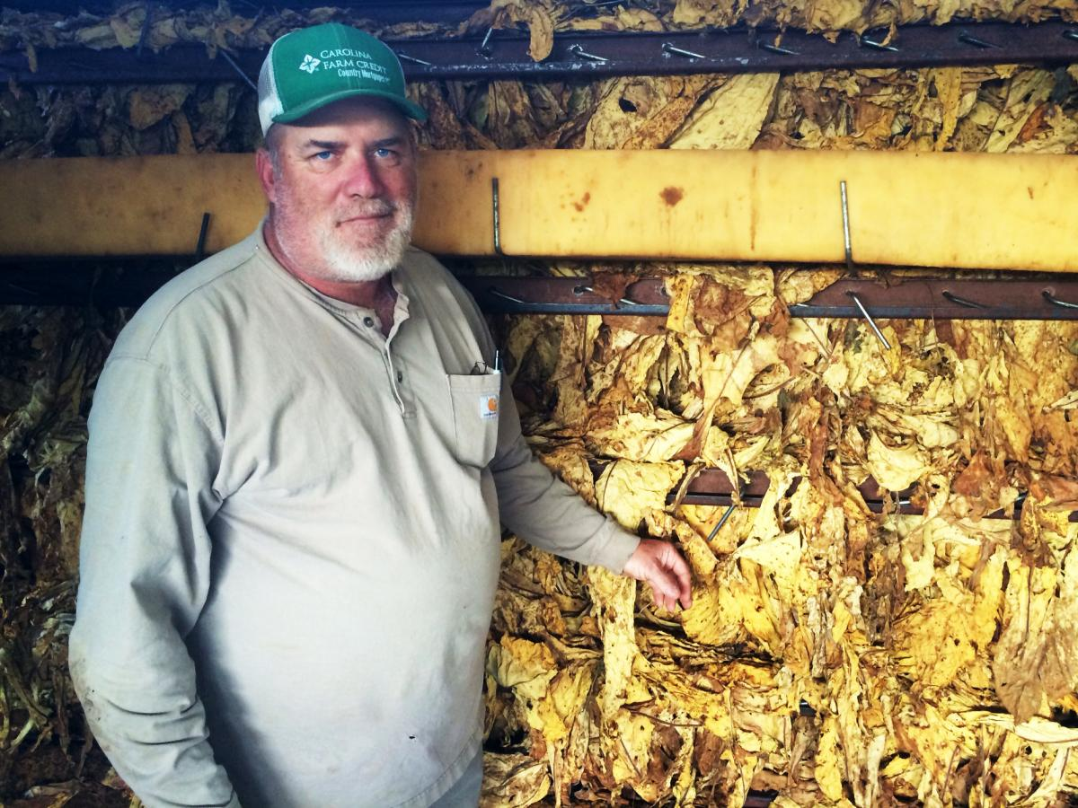 Marvin Eaton owns a farm in Belew's Creek, N.C., where he grows 200 acres of tobacco. He bought the farm from his grandfather and plans to pass it down to his son.