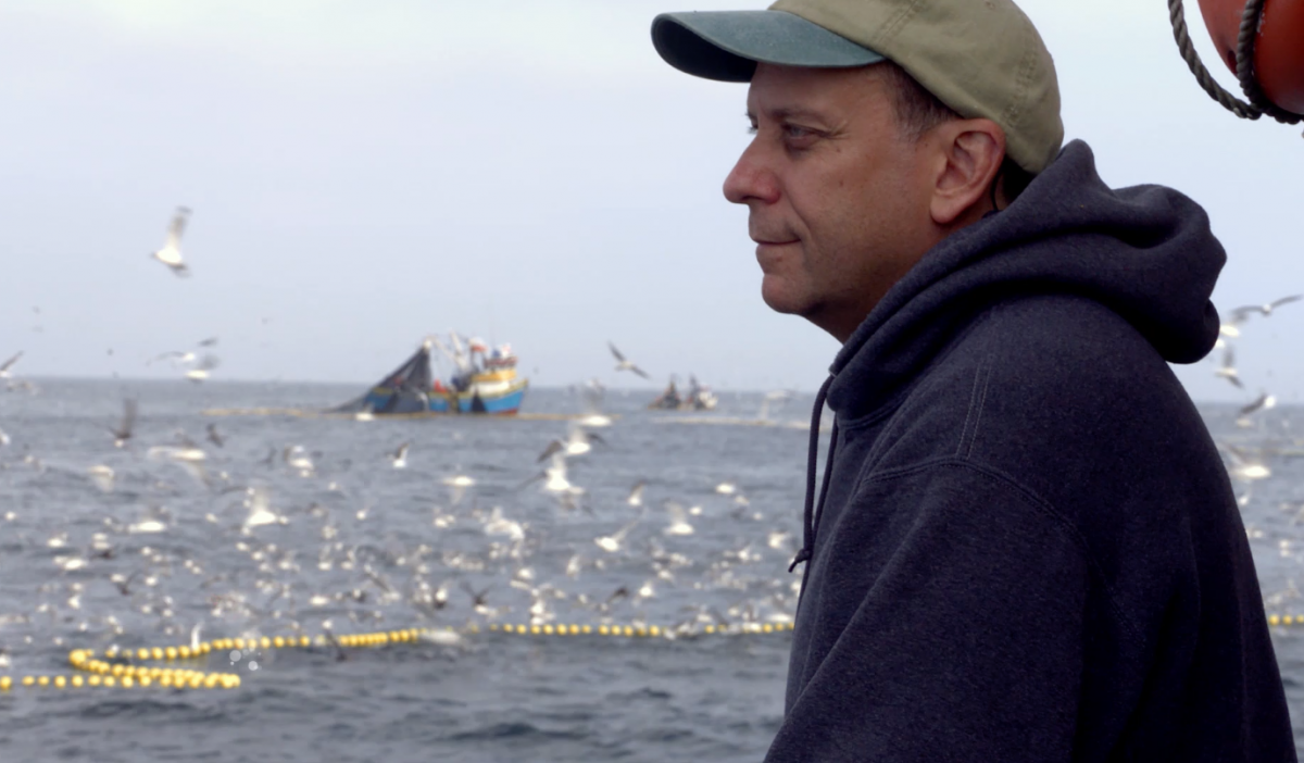 Paul Greenberg looks out at an anchoveta fleet in Peru. The fish is mostly ground up for use as feed on animal and fish farms.