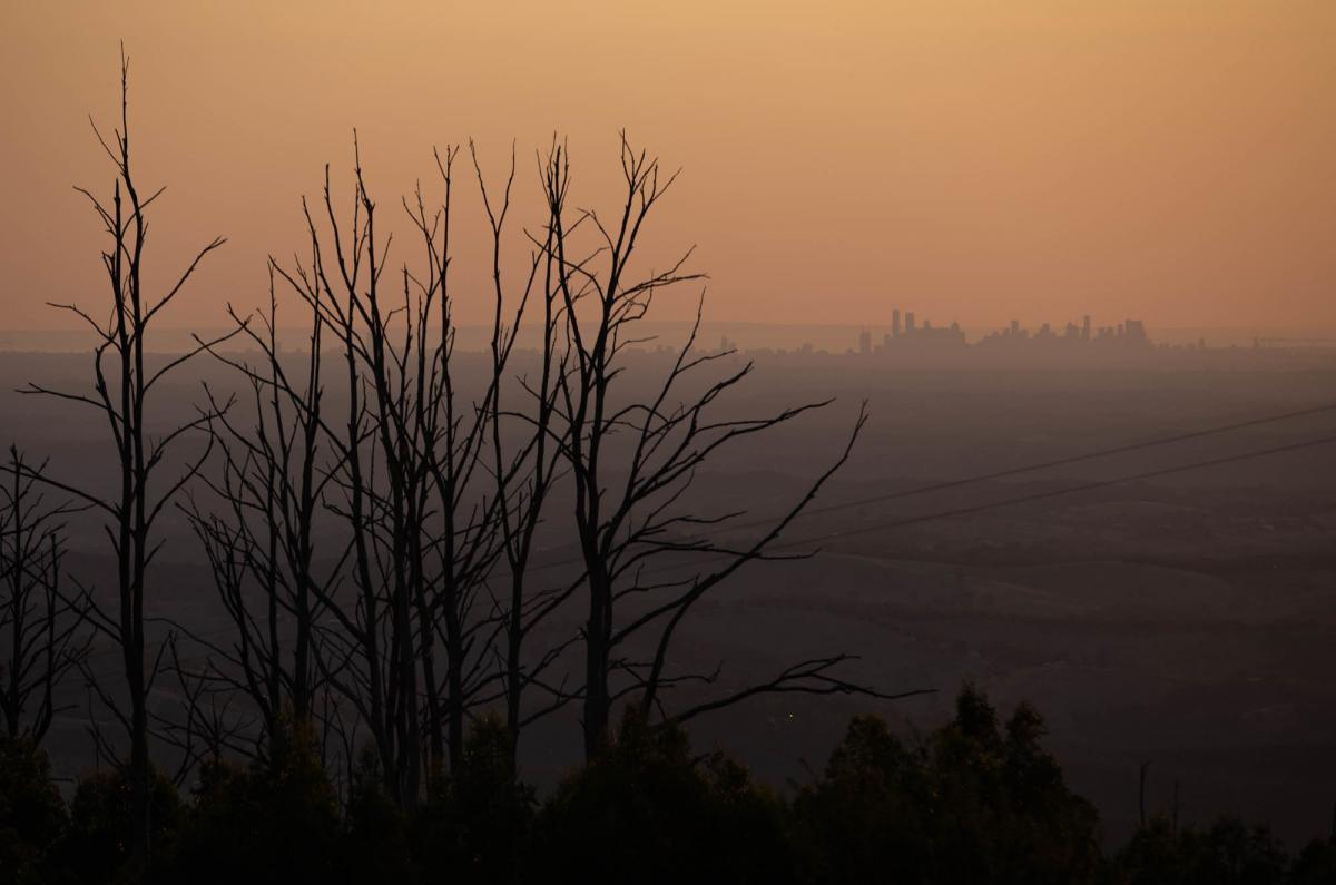 Bushfires followed by intense rain can cause unsettled sediment and debris to contaminate local water reservoirs. Melbourne's water authority invested in catchments to combat this threat, though scientists are still trying to understand when and how these