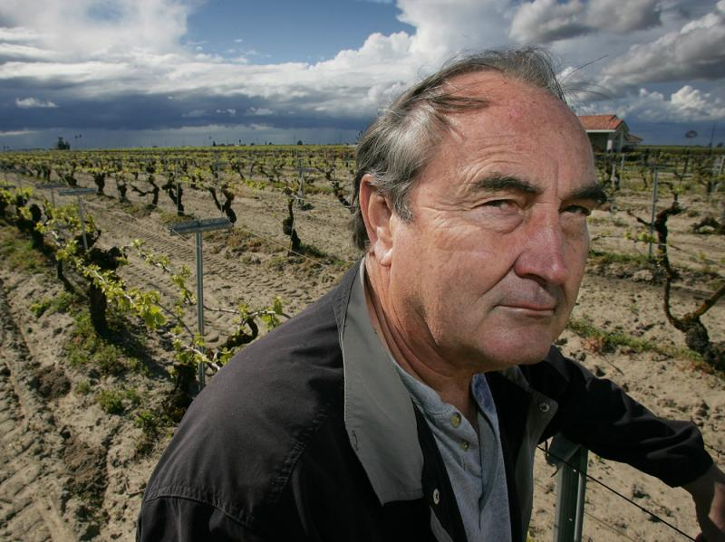 Raisin farmer Marvin Horne stands in a field of grapevines planted next to his home.
