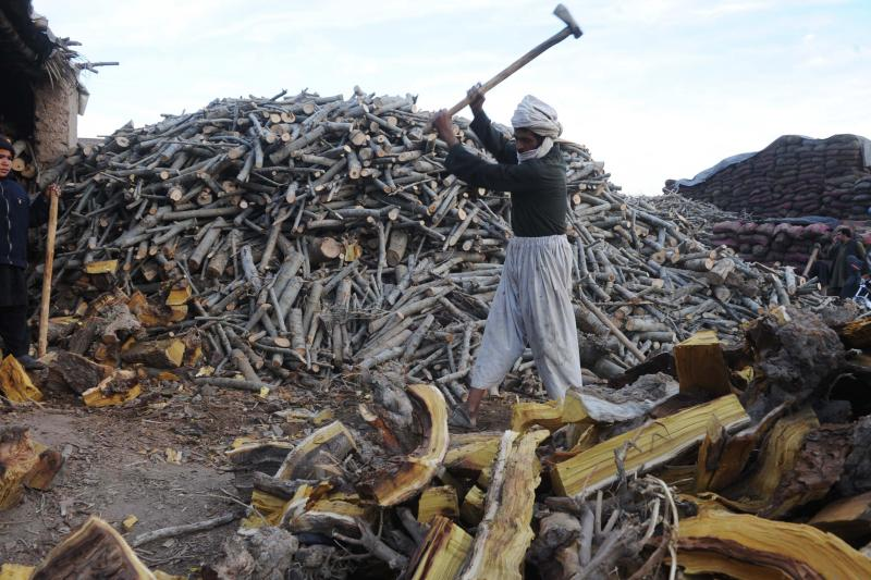An Afghan laborer works in a firewood yard at a market in Herat on Dec. 11, 2011.