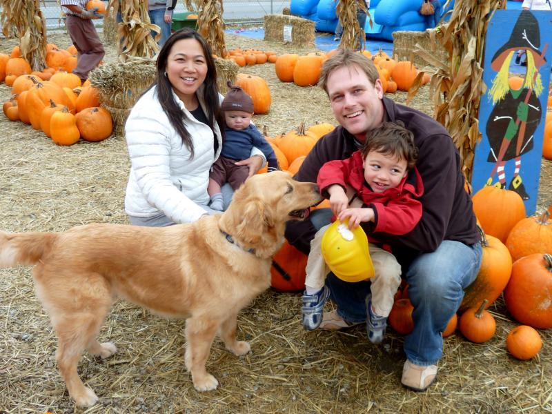 Jennie and Kristian Aspelin pose in a pumpkin patch with their children two weeks before three-month-old Johan died.