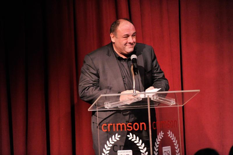 Actor James Gandolfini speaks at the New York Film Critics Circle Awards in January 2013. He died on June 19.