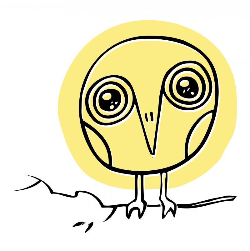David Sedaris's new book is called Let's Explore Diabetes With Owls.