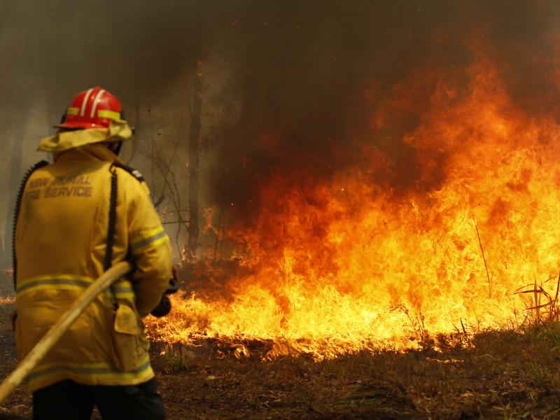 Firefighters work to contain a bushfire along Old Bar roadon Saturday.