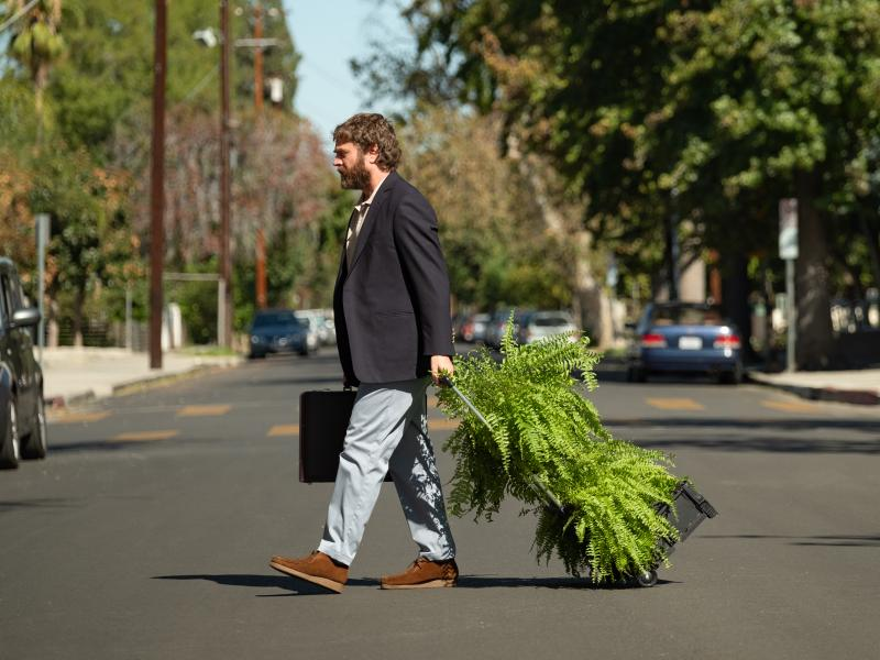 Based on the Funny or Die Web series, Between Two Ferns: The Movie sees Zach Galifianakis embarking on a road trip packed with celebrity cameos.
