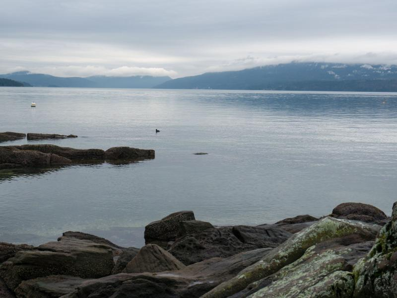 View of the waterfront from Vancouver Island, British Columbia, Canada on January 20, 2020. The number of American pleasure craft arriving from Washington state has alarmed Canadians living just across the border.