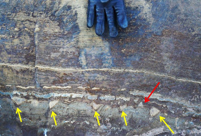 A new analysis of what were initially thought to be microbial fossils in Greenland suggests they might instead just be mineral structures created when ancient tectonic forces squeezed stone. While most of the structures point in one direction, the red arr