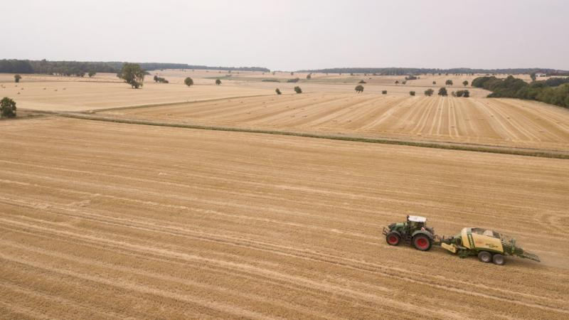 The harvest is bad for German farmers this year as the country has experienced the hottest summer on record and months without rainfall.