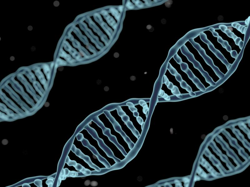 An artist's rendering of DNA. Scientists have found traces of DNA that they say is evidence that prehistoric humans procreated with an unknown hominin group in West Africa.