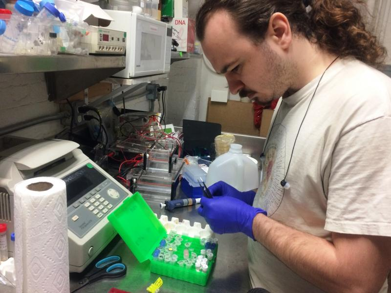 Will Shindel prepares for a gene-editing class using the CRISPR tool at a Brooklyn community lab called Genspace.