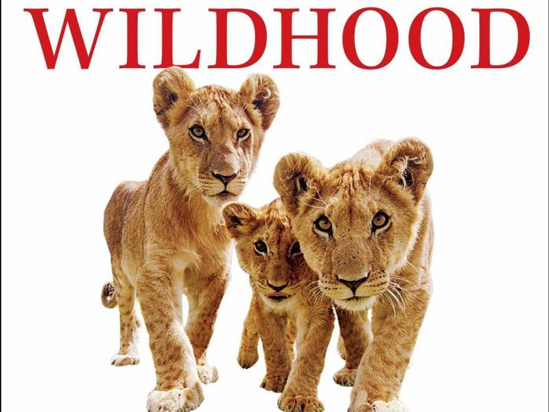 Wildhood: The Epic Journey from Adolescence to Adulthood in Humans and Other Animals, by Barbara Natterson-Horowitz and Kathryn Bowers