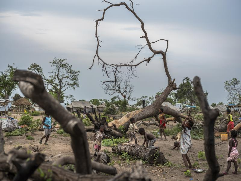 Children play around trees downed by Cyclone Idai at the Guara Guara resettlement site in Mozambique, where thousands of people are still living more than nine months after the storm.