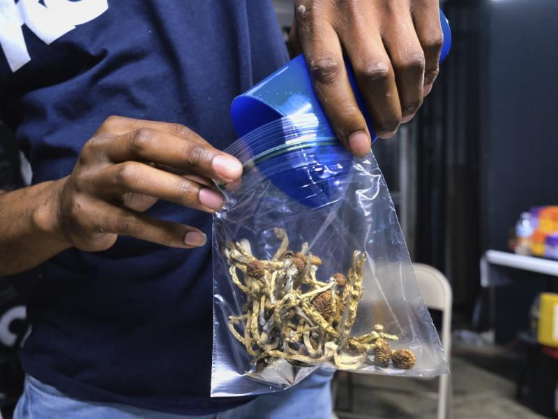 Oakland City Council has voted to decriminalize the possession and use of entheogenic, or psychoactive, plants and fungi.