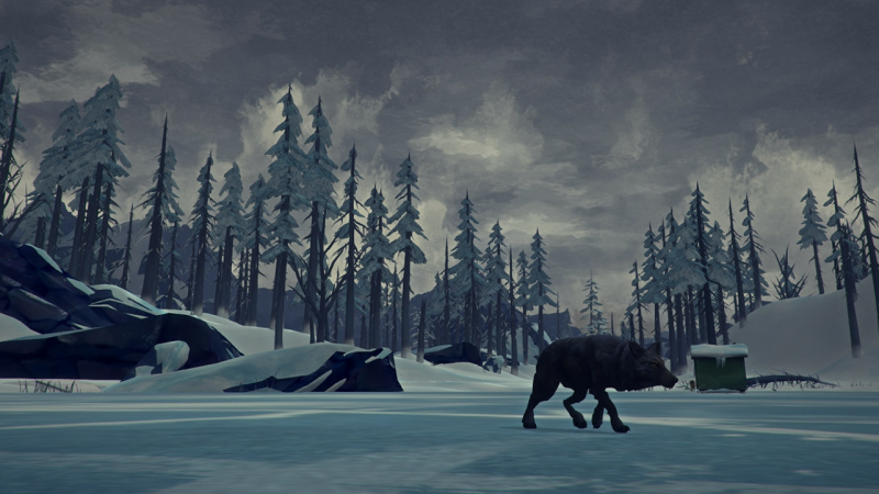 Someone — either this wolf or you — is about to meet an unfortunate end in the survival simulator The Long Dark.