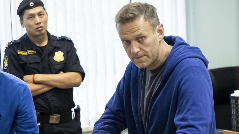 Alexei Navalny, one of Russia's most prominent opposition figures, appears in a Moscow courtroom on July 24. A longtime critic of President Vladimir Putin, he was recently arrested after calling for a mass protest against the exclusion of opposition candi