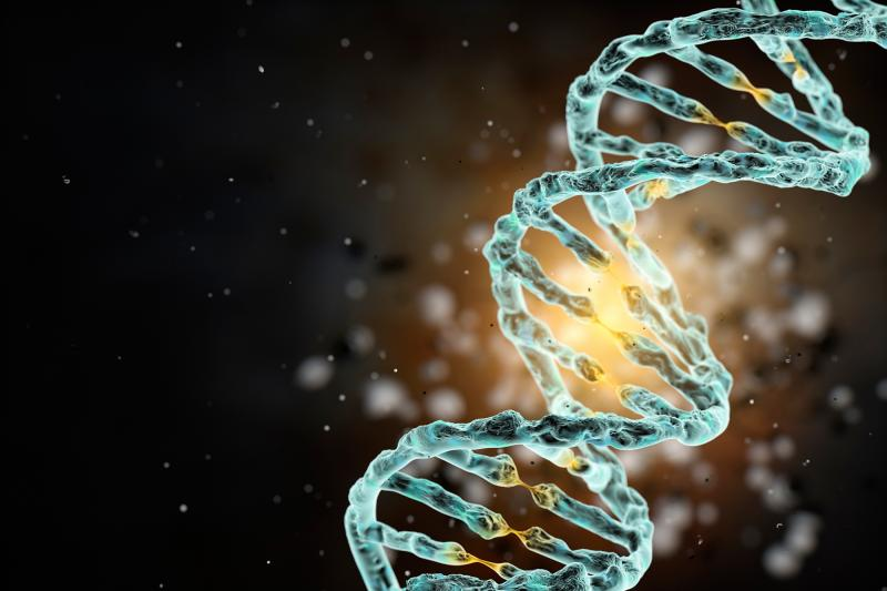 Active strand of human DNA.