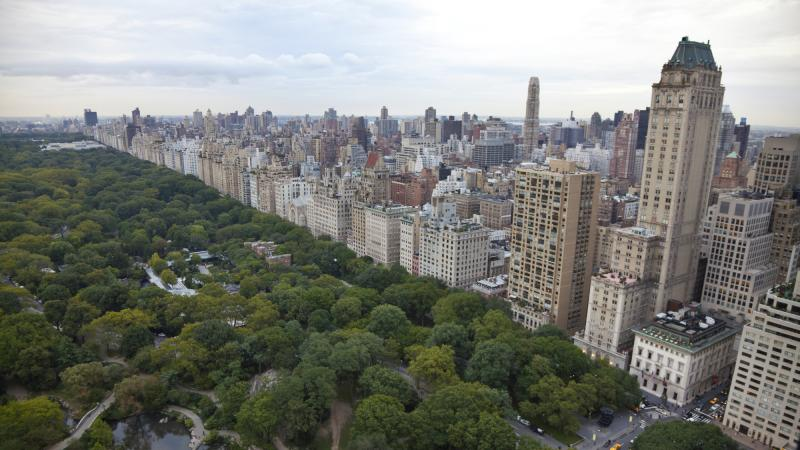 The Bronx may be up and the Battery down, but Central Park is where an amazing wealth of different sorts of microbes play.