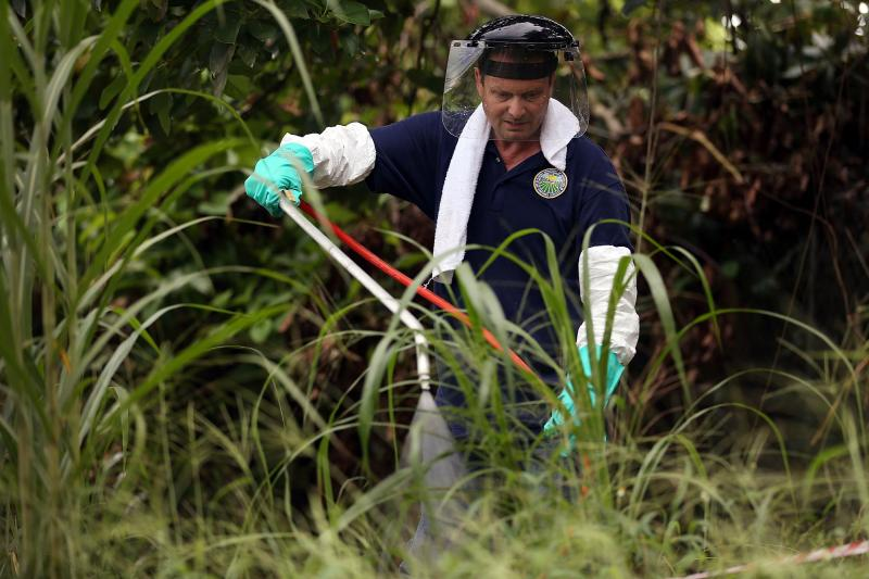 Stephen Jenner, from the Florida Department of Agriculture and Consumer Services, sprays an insecticide under an avocado tree where some Oriental fruit flies were found in Homestead, Fla.