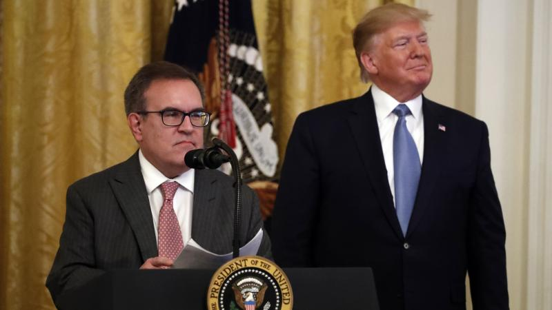 Environmental Protection Agency Administrator Andrew Wheeler and President Trump attend an event about the environment at the White House in July.