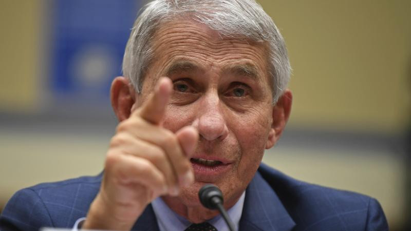 Dr. Anthony Fauci, director of the National Institute for Allergy and Infectious Diseases, testifies during a House Subcommittee hearing on the coronavirus crisis in July.