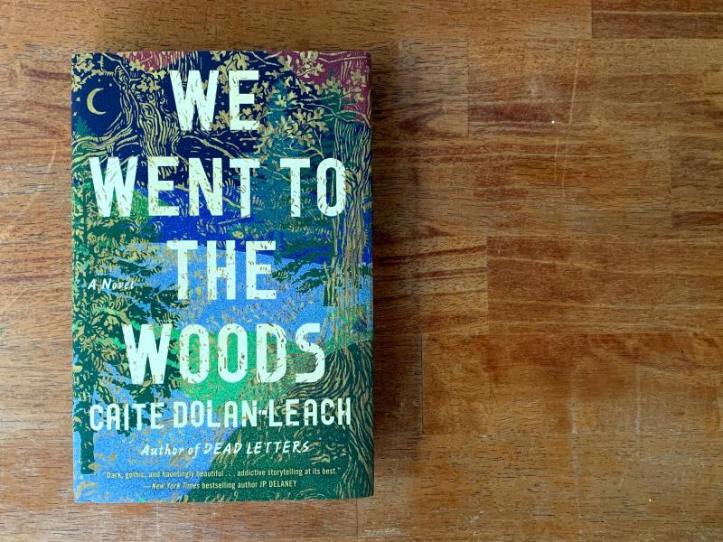 We Went to the Woods, by Caite Dolan-Leach