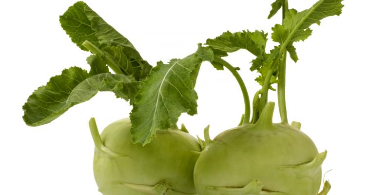 Kohlrabi, peeled and sliced, is refreshing, but lightly poached is good too, says chef April Bloomfield.