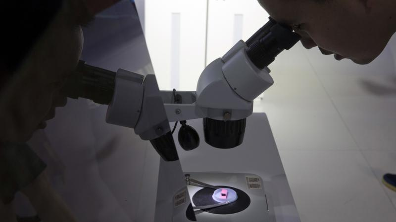 """A visitor to the 21st China Beijing International High-Tech Expo looks at a computer chip through a microscope. The White House said Tuesday that it will impose tariffs on $50 billion in imports from China containing """"industrially significant technology."""""""