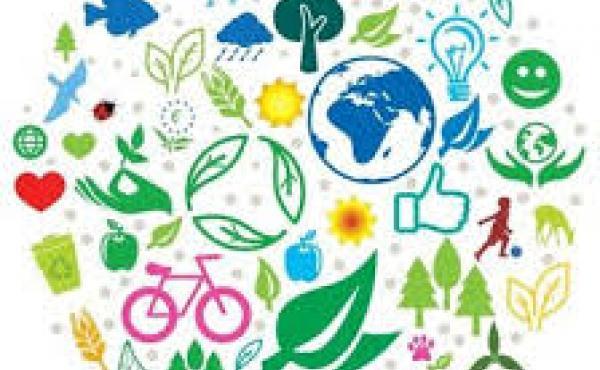 environmental images