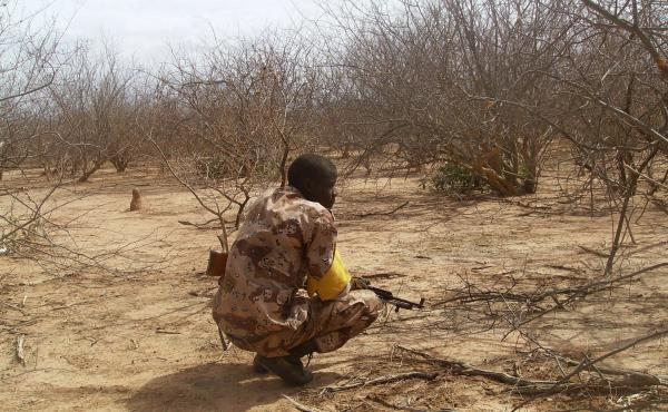A Malian troop member checks bushes after a military raid in the Wagoudou forest.