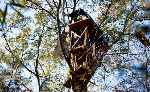 David Daniel, an east Texas landowner, was so determined to block the Keystone XL pipeline from coming through his forest that he built an elaborate network of treehouses eight stories above the ground.