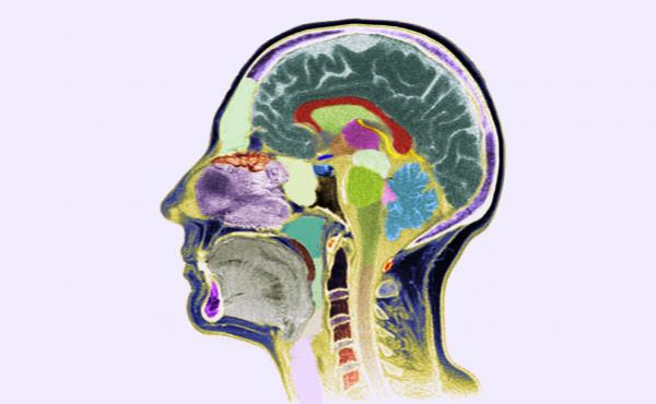 Despite significant advances in neurology and imaging, researchers still don't have simple lab tests for diagnosing patients with mental disorders. Diagnoses are still mostly based on a patient's signs and symptoms.
