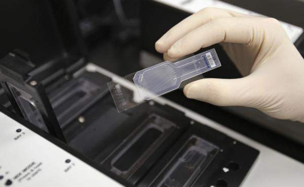 A biologist holds a slide prepared for testing in a micro array for biological hazards at the Lawrence Livermore National Laboratory in Livermore, Calif.
