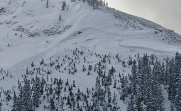 A skier was killed on Friday when he was buried in an avalanche in Colorado's Anthracite Range. The crown of the avalanche was on the right, below the rocky ridge. The debris washed through the trees below.
