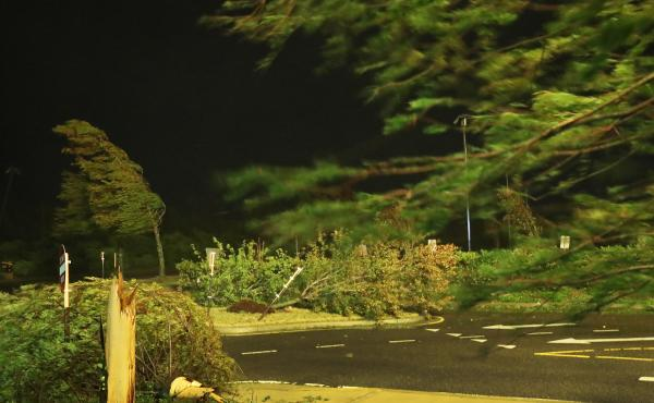 Hurricane Laura blows trees near the Golden Nugget Hotel in Lake Charles, La., as it comes ashore early Thursday. The storm is blamed for four deaths, all caused by trees falling on homes.