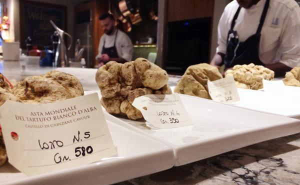Five lots of white truffles on display entice bidders in both Philadelphia and Italy.