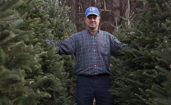 Joey Clawson at one of his Christmas tree stands on the first day of harvest. He grows about 95,000 firs on his operation.
