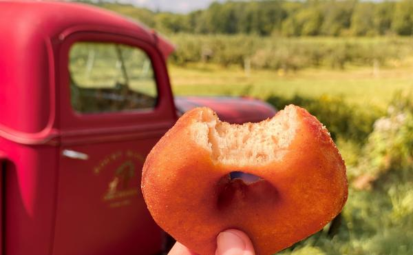 Alex Schwartz is hunting for the best cider doughnuts New England has to offer.