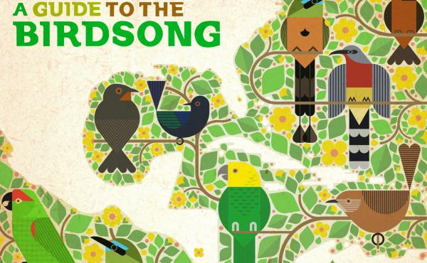 Ten artists from Mexico, Central America and the Caribbean recorded tracks using birdsong from their country, with all profits of the vinyl and digital release going to bird conservation projects.