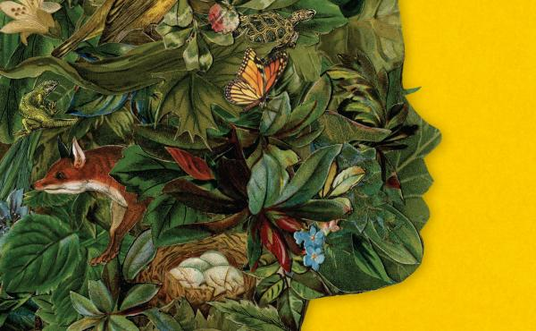 Cover detail of Late Migrations, by Margaret Renkl