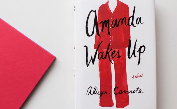 Amanda Wakes Up, by Alisyn Camerota