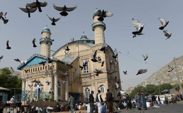 Pigeons fly into the air as Muslims offer prayers at the start of the Eid al-Fitr holiday, which marks the end of Ramadan, at the Shah-e Do Shamshira Mosque in Kabul on Friday. This Eid, Afghans welcomed the start of the Taliban's first cease-fire since t