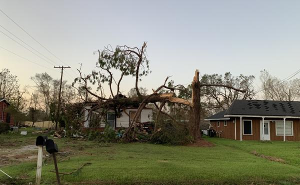A home near Iowa, La., was crushed by a snapped tree after Hurricane Laura made landfall with 150 mph winds Thursday. The area is facing two disasters at once.